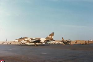 N'Djamena 1987 Jaguar 3